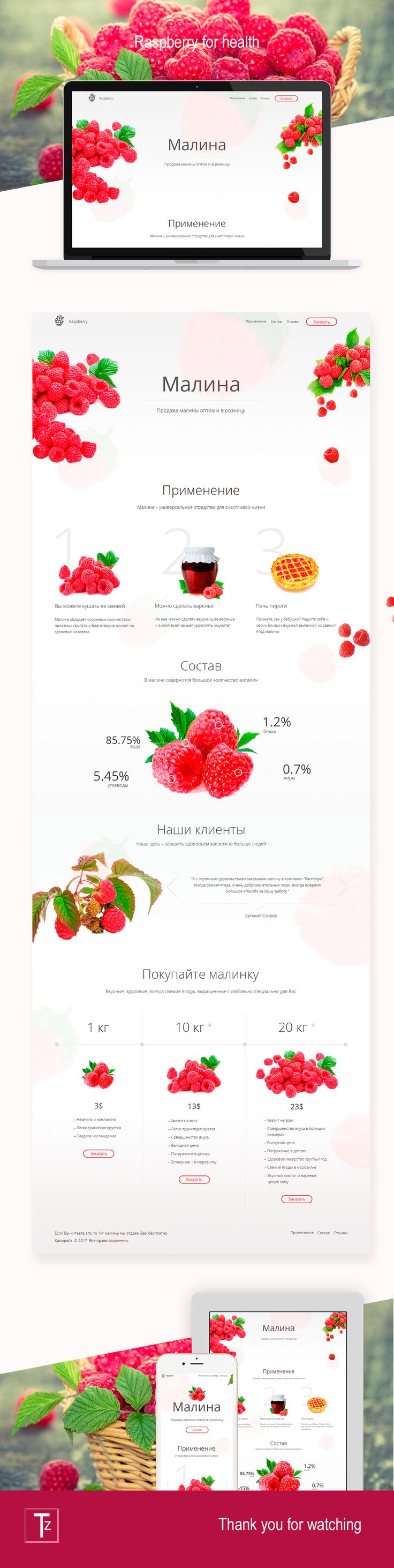 Landing page for selling raspberry