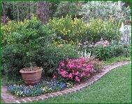 Gardening with Perennials in Florida. A complete list of perennials that grow well in Florida.