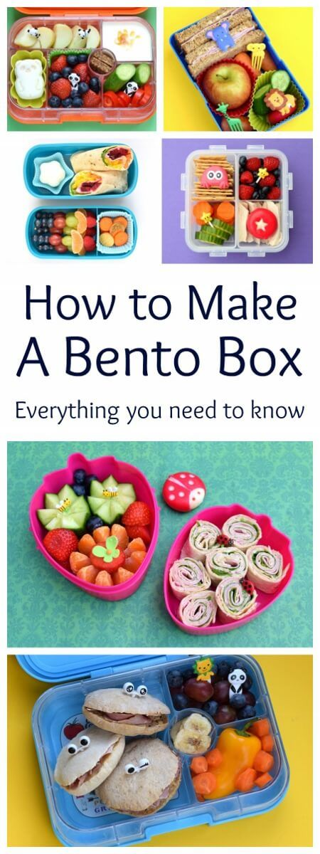 How to make a bento box for kids - everything you need to know about packing bento lunches - a full set of tutorials and ideas from Eats Amazing UK