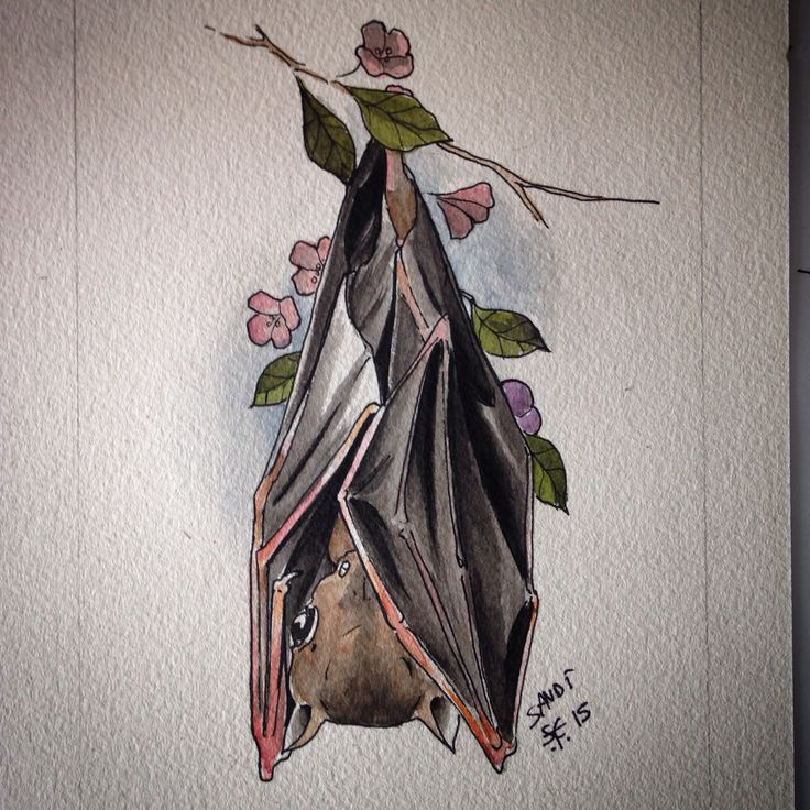 NIGHT LOVER Fruit bat  Tattoo design  Watercolor