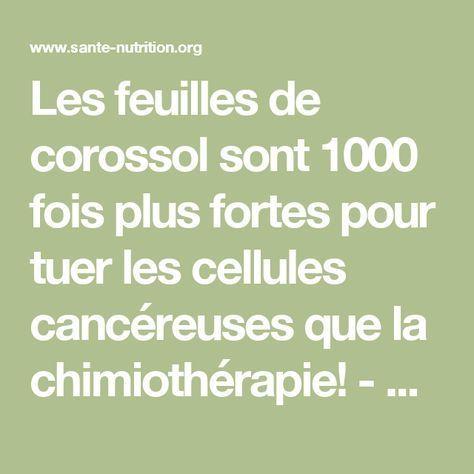 les feuilles de corossol sont 1000 fois plus fortes pour tuer les cellules canc reuses que la. Black Bedroom Furniture Sets. Home Design Ideas
