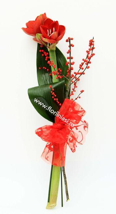 Un fir de amaryllis cu o crenguta de ilex, 2 frunze de aspidistra si o funda mare rosie de organza cu catifea. Simplu si elegant.  Super accesibil :) Card atasat.  Perfect ca si accesoriu de Craciun / Anul Nou.  Viziteaza http://www.floriiniasi.ro/flori-florarie-online/Amaryllis-rosu-cu-funda-de-organza-p-17161-c-252-p.html