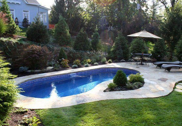 20 Exquisite Kidney Shaped Pool Designs With Images Kidney