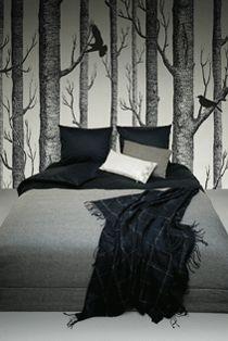 woodland birch wallpaper - kinda like once upon a time
