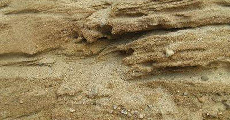 Tratamiento para las picaduras de las pulgas de arena. Es extraño que un bicho tan pequeño como una pulga de arena pueda ser capaz de hacer una picadura que causa tantos problemas. Estos insectos tienen partes afiladas para picar, y cuando lo hacen, el resultado es un inmediato dolor, a diferencia de cuando te pica un mosquito, que a veces ni lo notas. Las pulgas de arena tienden a picar en masa, o la ...