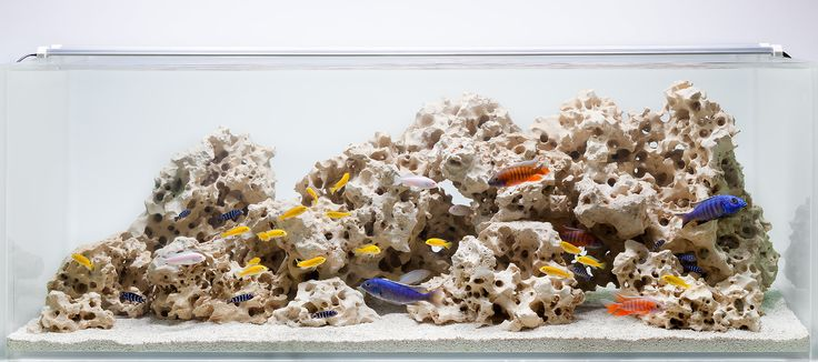 Aquarium Design Group - A Classic African Cichlid Hardscape  Like the levels of layout... Perhaps break into two pieces of scape