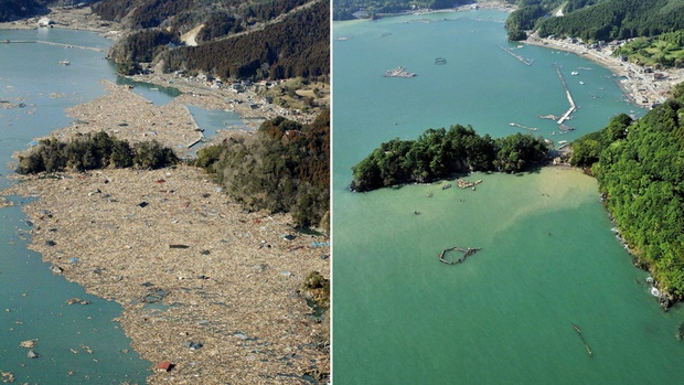 Chemicals in tsunami debris could pose coastal threat