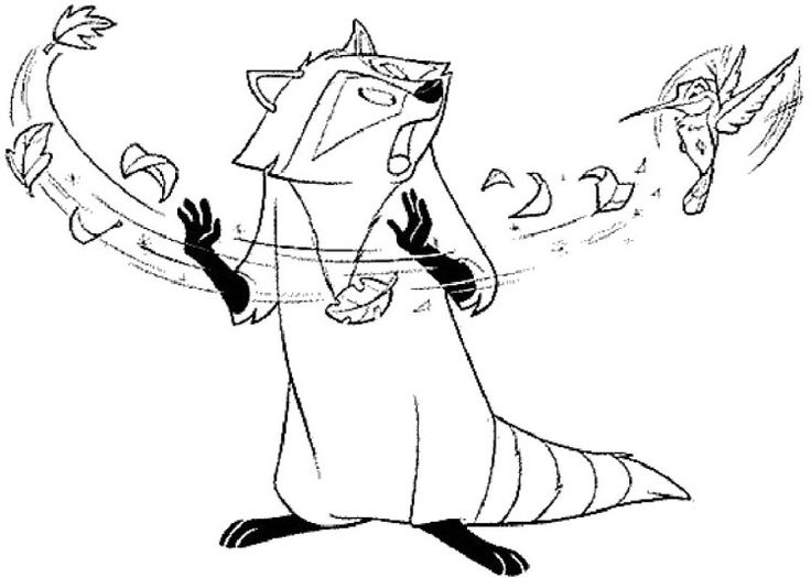 pocahontas raccoon coloring pages - photo#5