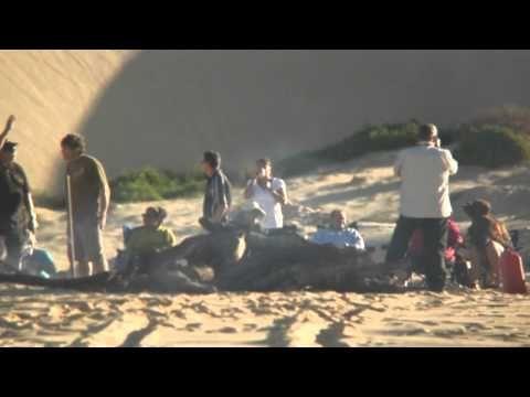 Worimi Conservation Lands - NSW National Parks - YouTube
