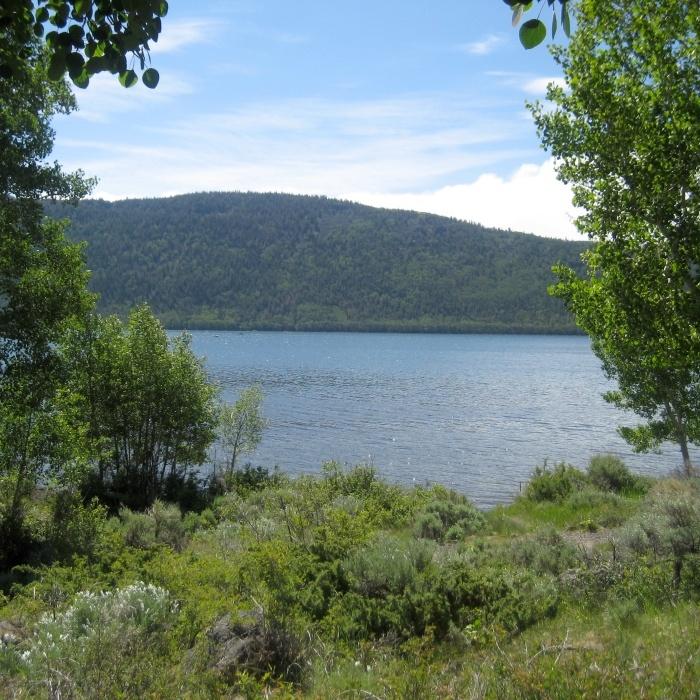 8 best loa utah images on pinterest utah beautiful for Fish lake utah camping