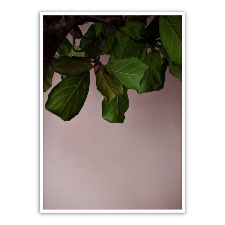 Green Leaves Affisch | Paper Collective | Länna Möbler | Handla online