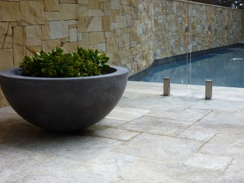 great pool plant