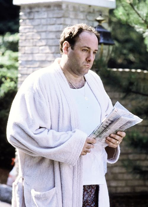 James Gandolfini as Tony Soprano.  I know that this is technically a TV role, but when you're talking about excellent roles, you at least have to make a nod to James Gandolfini's masterful performance of Tony Soprano.
