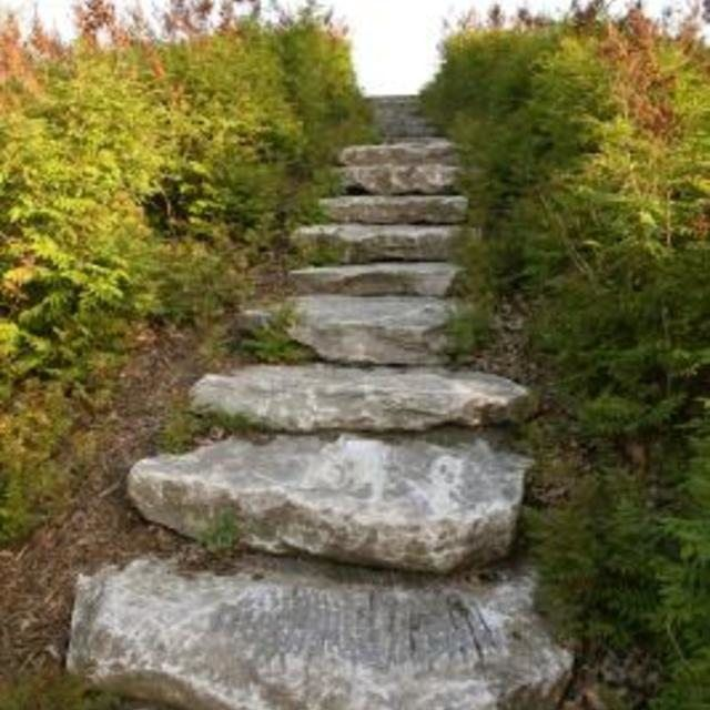 stone steps last for many years and give a rustic look to slopes