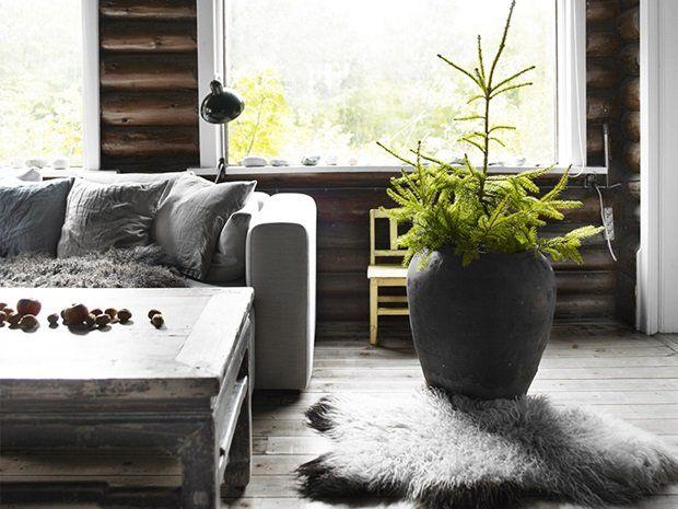 Rå jakthytte med mørke vegger - Hytteliv med rå kontraster - Boligpluss.no