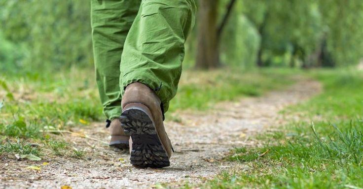 Can Brisk Walking Help Burn Belly Fat?