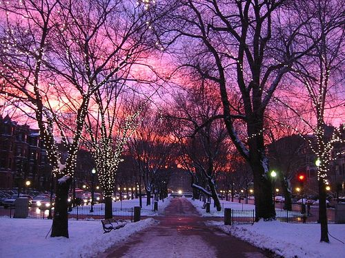 There is nothing in the world more beautiful than a winter sunset in Boston.