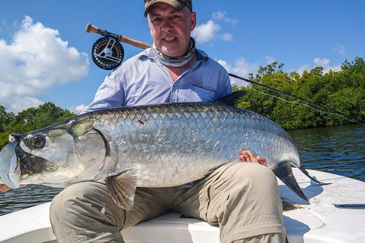 60 best Cuban Fly Fishing images on Pinterest