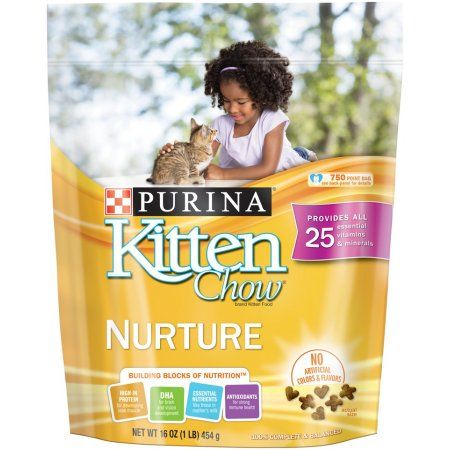 Purina Kitten Chow Nurture Dry Cat Food 16 Oz Kitten Food Dry