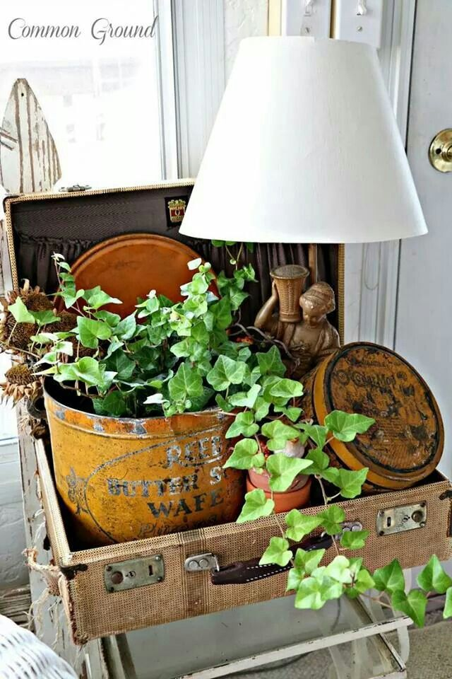 Great  decorative look--old suitcase, old tins, vintage lamp, plant