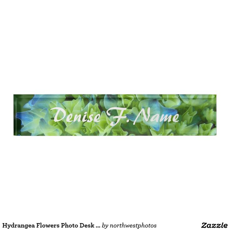 Hydrangea Flowers Photo Desk Name Plate