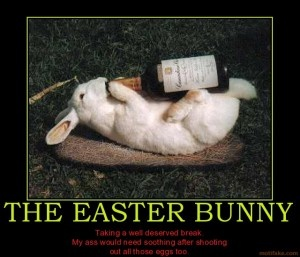 easter bunny funny pictures: Bunnies Obsession, Bunnies Bar, Drunken Bunnies, Easter Bunnies, Bunnies Easter Alice, Happy Eastern, Easter Eggs, Bunnies Chow, Adorable Animal