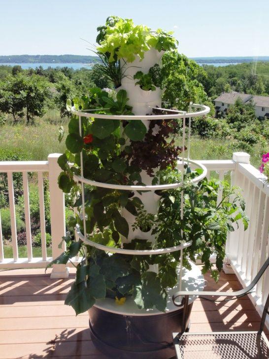 86 best Gardening : Vegetable Gardening : Tower Garden by Juice ...