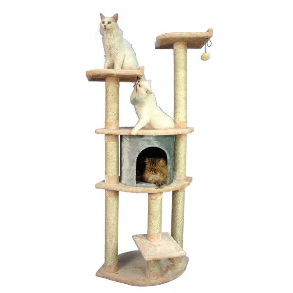 Cat Beds and Furniture Cozy and comfy kitten beds, blankets and furniture are ready for your feline friend whether it's naptime or playtime. Shop the latest collection of cat bedding and furniture, including kitten blankets, heated cat mats, cat towers, beds and more from PetSmart.