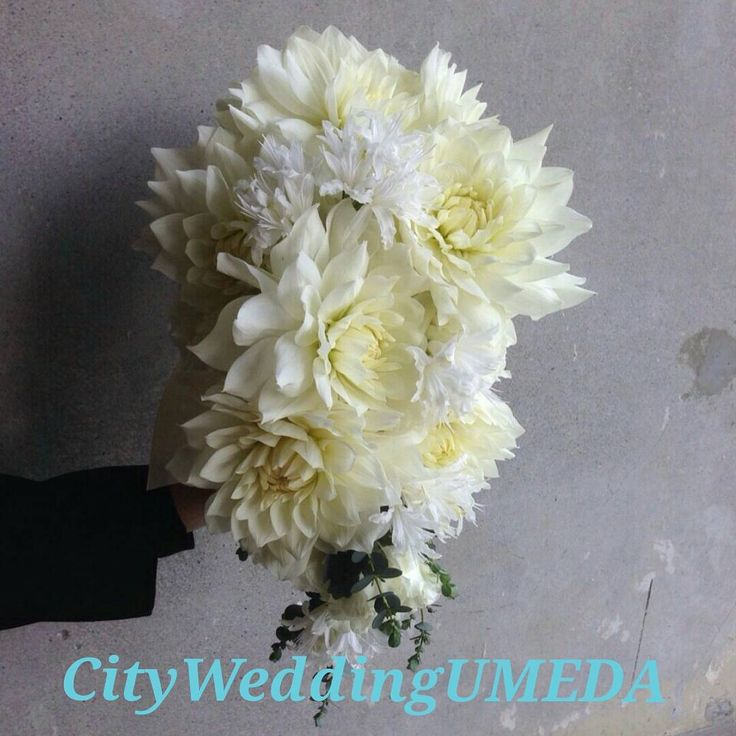 以前オーダー頂いた生花の#ダリア の #キャスケードブーケ  #ホテル婚 にオススメの白~白グリーンの正統派ブーケ 画像まとめblog更新しました!  CityWeddingUMEDAでは、全国ブライダルヘアメイク出張を承っております。  ブーケや髪飾り、花冠オーダーも承っております。  お問い合わせはプロフィールからホームページを見て頂き、コンタクトからメールお願い致します。  お電話でも承っております。  06-6940-7304  CityWeddingUMEDA  森田遼子  #CityWeddingUMEDA #梅田 #堂島 #ブライダルヘアメイク #振り袖 #結婚準備  #make  #色打ち掛け #結婚式 #Wedding #treat #プレ花嫁 #Weddingtbt  #ヘアアレンジ #髪型  #へアセット #ルーズアップ #アップ #ヘアメイク #トリートドレッシング  #ヴェラウォン #VERAWANG#ジェニーパッカム #花冠  #ブーケ  #生花 #大阪