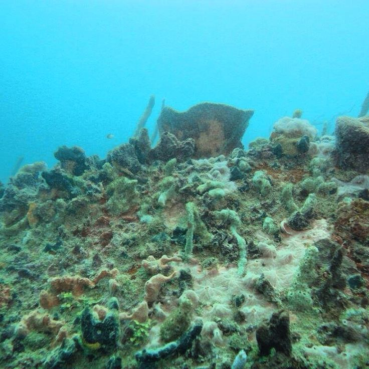 30 mts deep