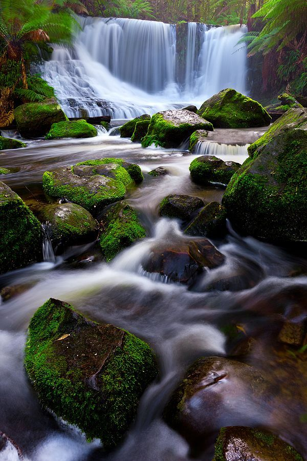 Australia Travel Inspiration - Horseshoe Falls Tasmania.