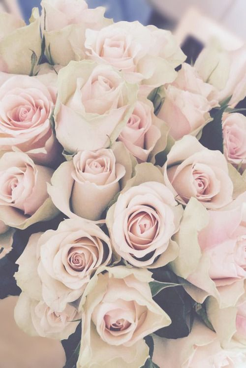 "selfportraitaucoursdelavie: "" Flowers en We Heart It. "" I can't deny my love for white flowers"