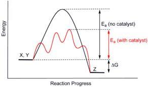 Catalysis - Wikipedia, the free encyclopedia