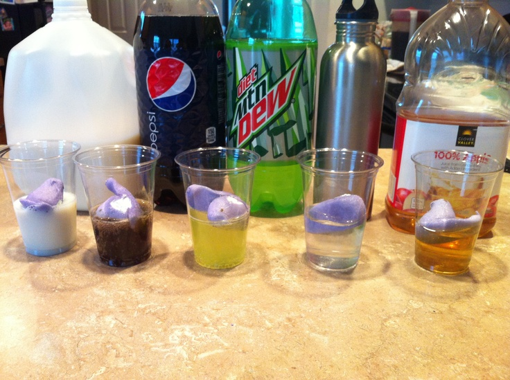 """For the 2nd grade observation science project. We melted peeps for two hours in milk, tap water, diet mt. Few, Pepsi, and apple juice. Milk dissolved the peep the most in 2 hours. I had money on the mt. Dew! In future years, we can revisit to answer """"why""""."""