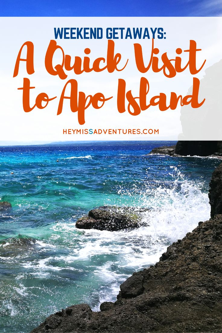 Want to swim with the turtles in Apo Island? Check out our quick trip here!