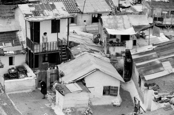 Dourgouti-N.Kosmoq 1955 Μια κοπέλα στέκεται στη βεράντα . Η σκεπή της σπιτιού της βρίσκεται σε άσχημη κατάσταση. Ο χειμώνας σε αυτά τα σπίτια ήταν μια δοκιμασία. Συχνά κατέρρεαν μετά από τις καταιγίδες και υπήρχαν θύματα. Κάτω δεξιά το πηγάδι της γειτονιάς....  Διαβάστε όλο το άρθρο…