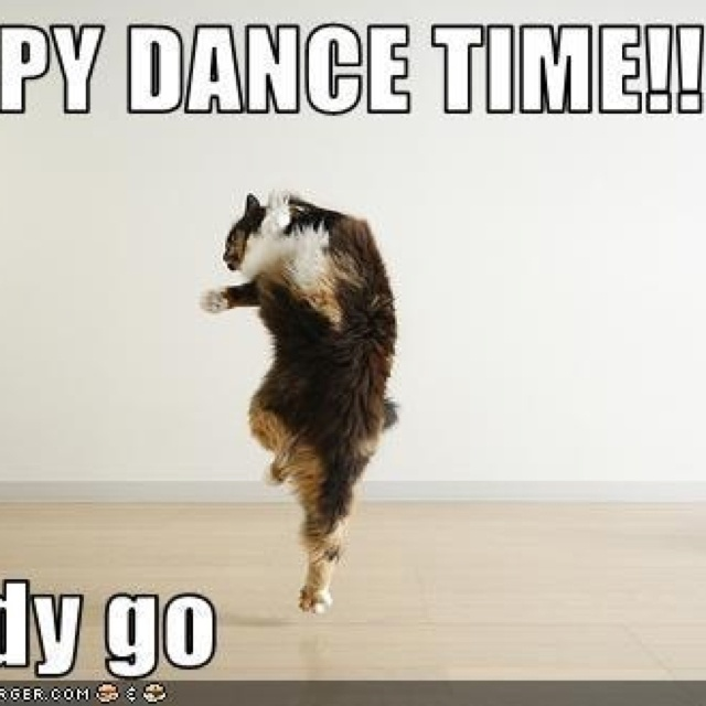 Dog Dancing With Cat