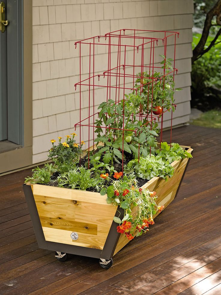 """Rolling Planter Box: U-Garden Bed on Wheels   You asked for a mobile cedar planter, and here it is! Butcher block cedar sides and lifetime aluminum corners make it handsome and durable; heavy-duty casters make it mobile on your deck or patio. The 2' x 4' planter box is 14"""" deep — plenty deep for your largest vegetable or flower plants. Gardeners.com"""