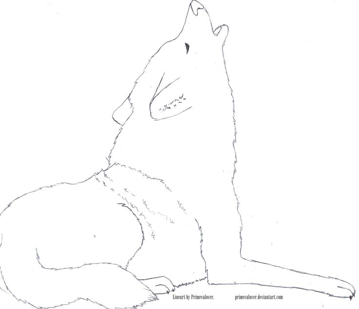Easy Wolf Sketches Wolf Drawings Howling Car Interior