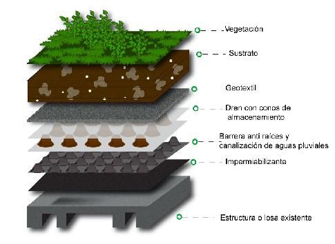 techo verde (con geotextil)