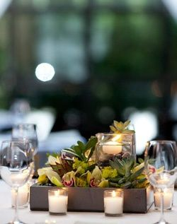 Succulents and candles used as table centerpieces