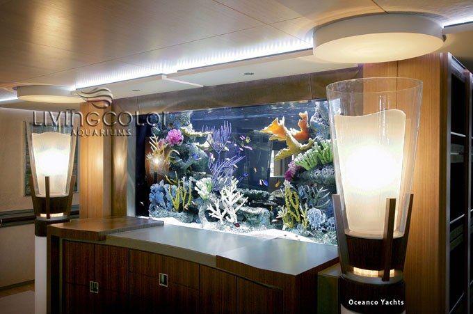 Seaworthy: 700 Gallon Marine Aquarium on a Mega Yacht