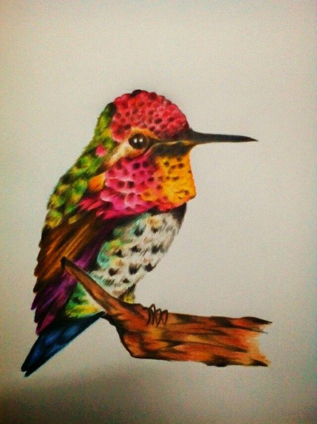 Hummingbird by Faber Castell POLYCHROMOS 36 set.