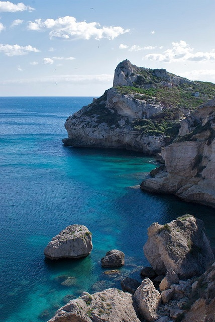 Sardegna! Oh the best childhood memories - rock traipsing, feeding schools of glimmering fish our lunch, watching our tan arms gather salt residue and learning to backwards dive... I'll come back soon!!