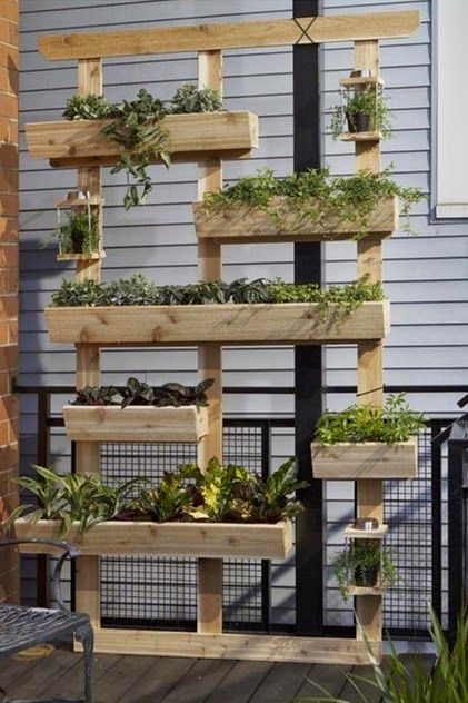 Outdoor living wall planter landscaping organic for Living wall planter