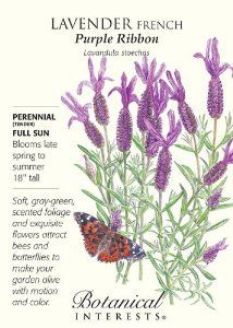 """French Purple Ribbon Lavender Seeds - 100 mg by Hirts: Seed; Herb. $1.99. Full Sun. Mature Height: 18"""". Hardy Zones 7-10. 100 mg of seed. Blooms Late Spring to Summer. Tender Perennial (Zones 7 - 10). Wing-like petals look like purple butterflies resting atop deeper purple flower heads. The strong, compact plants are ideal for herb and flower gardens, and planting in containers. Also called Spanish lavender, leaves have a different fragrance from other lavender varieties. In c..."""