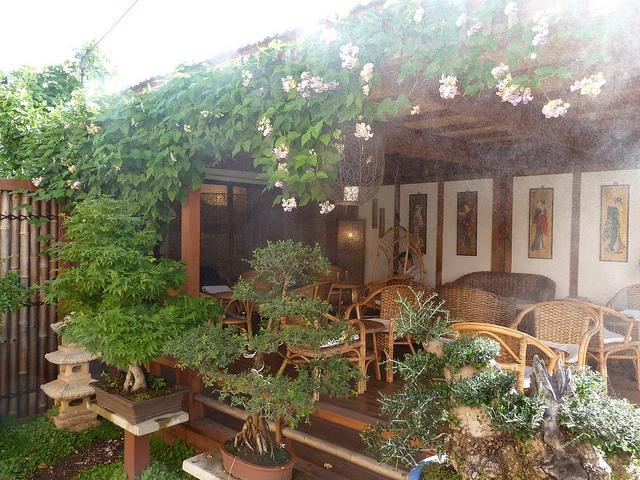 Bonsai Cafe in Footscray #melbourne