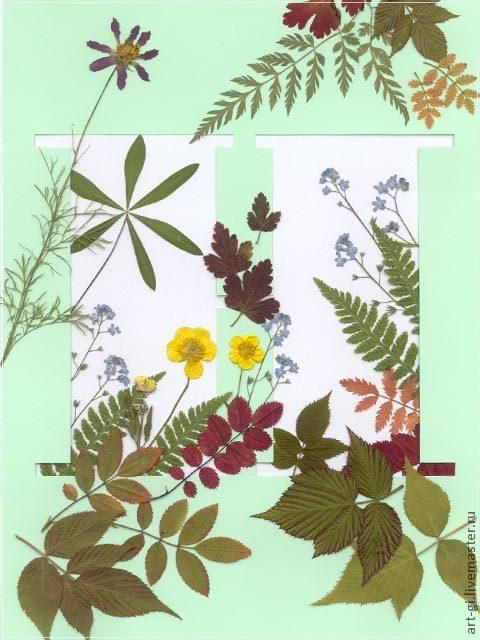 Сушим цветы (два простых способа) - Ярмарка Мастеров - ручная работа, handmade