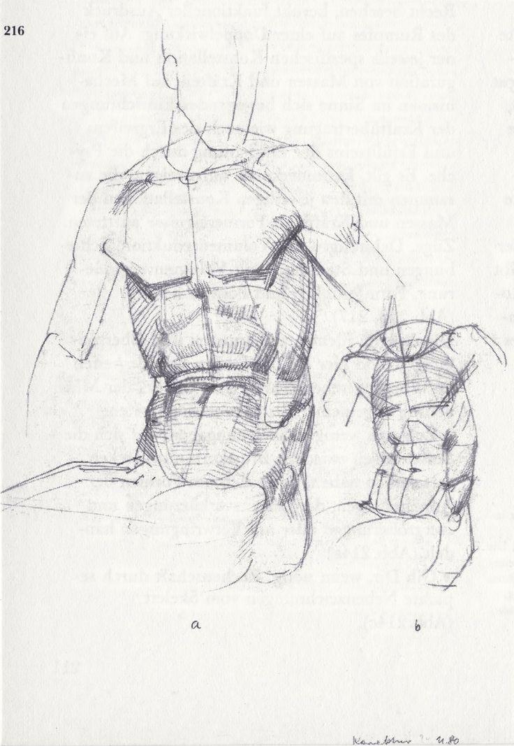 Anatomy - Bammes - Sehen und Verstehen