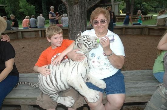 T.I.G.E.R.S. Preservation Station: Oh my god I want to feed a baby white tiger!!!!!